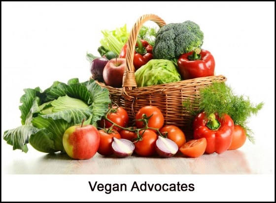 Vegan-Advocates_Opt